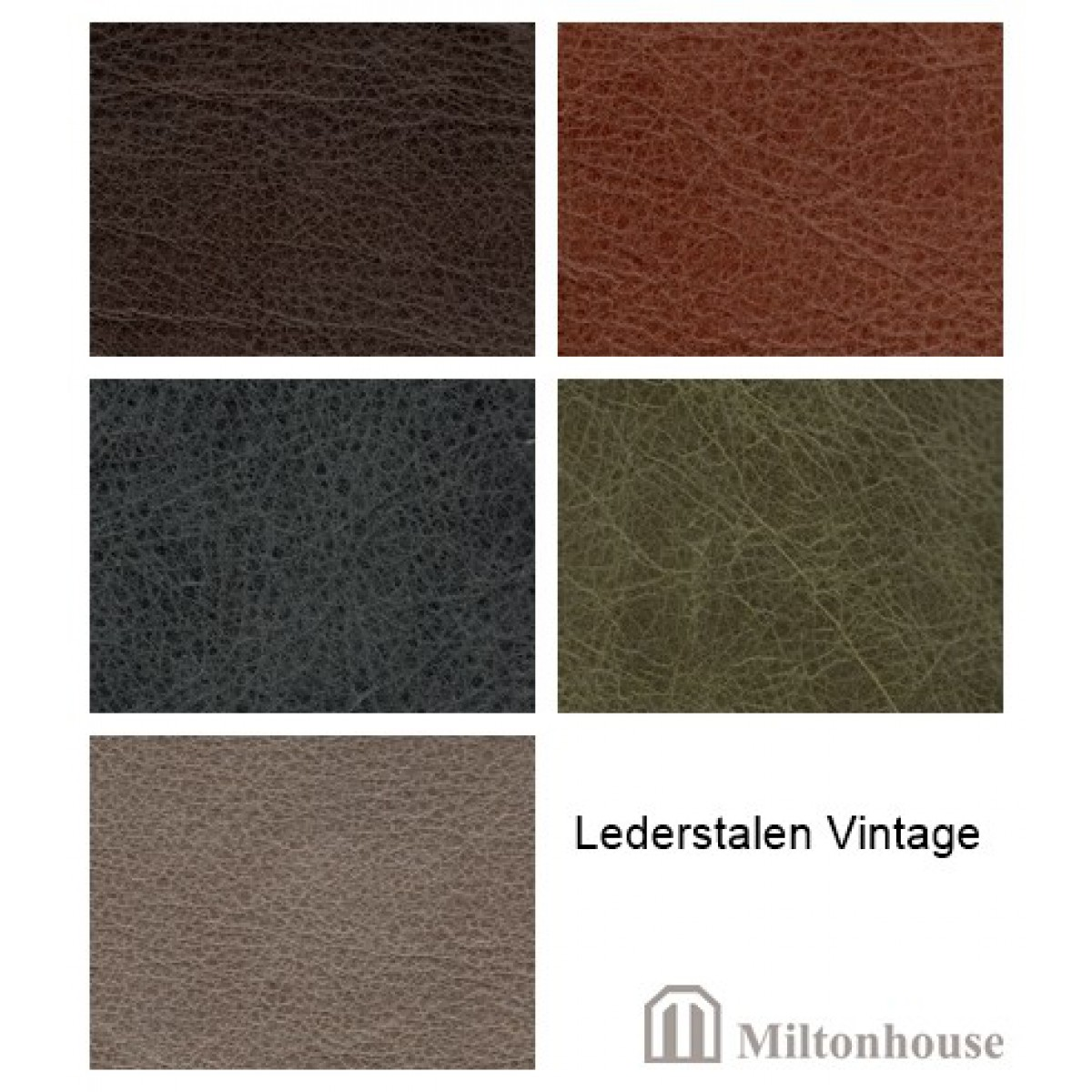 vintage-leer-leder-stalen-miltonhouse-he-stoelen