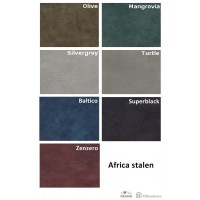 africa-leder-stalen
