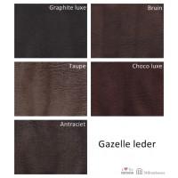 stalen_gazelle_leder